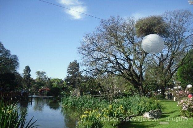 Jardín Japonés en Buenos Aires