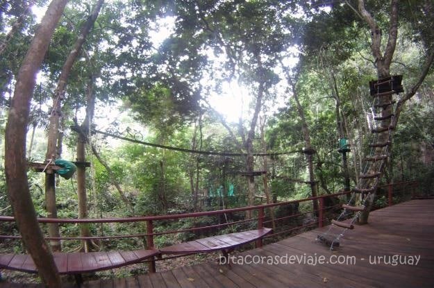 Tree_Top_Adventure_Park_Krabi_Tailandia_1