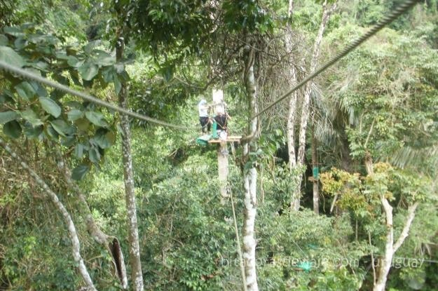 Tree_Top_Adventure_Park_Krabi_Tailandia_9