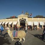 Bitácora 16, Días 1 a 4, ¿Que Visitar en Santiago de Chile?