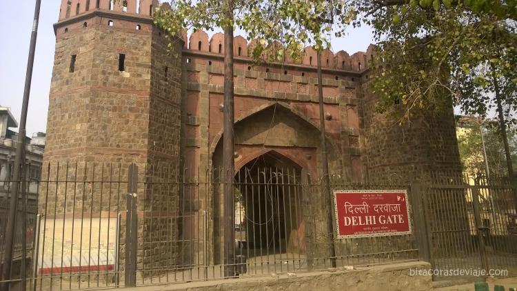 India_Delhi_19