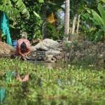 Bitácora 20, Día 4, Village Life… Viviendo Kerala por Dentro