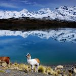 tips para viajar a Bolivia