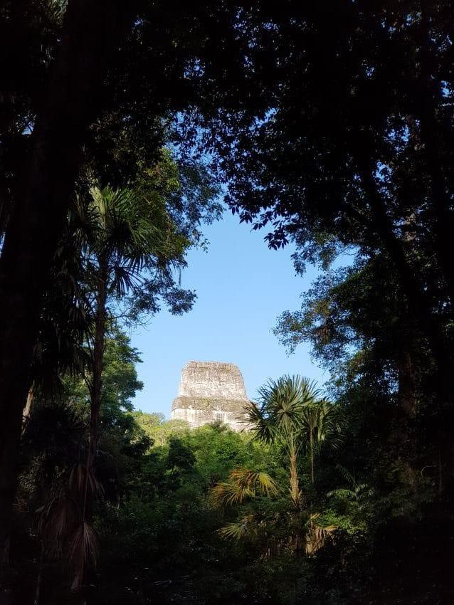 Tikal Templo